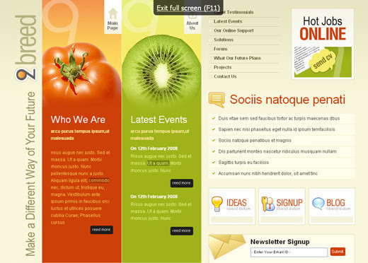 Csstemplates21 in 70+ Free XHTML/CSS Templates - Download Now