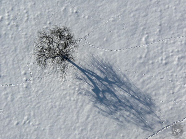 Beautiful aerial photography 22