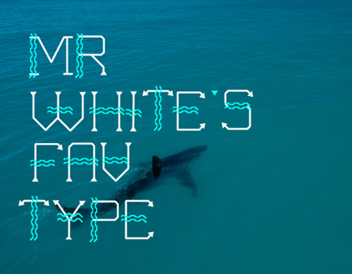 Remarkable examples of typogrpahy design