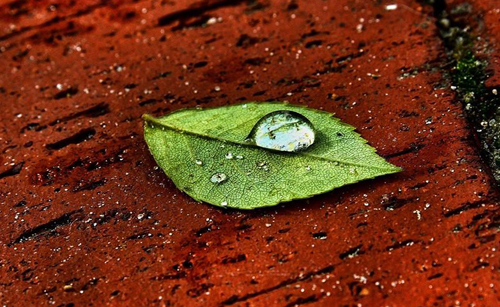 Water Drop Photography - 23