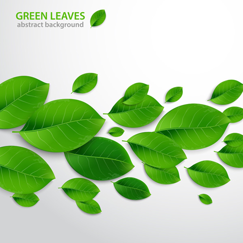 How to Create Realistic Vector Leaves in Adobe Illustrator