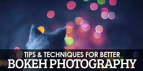 Tips & Techniques for Better Bokeh Photography