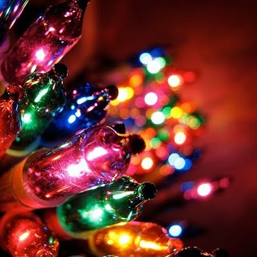 Twinkle Lights Photography-12