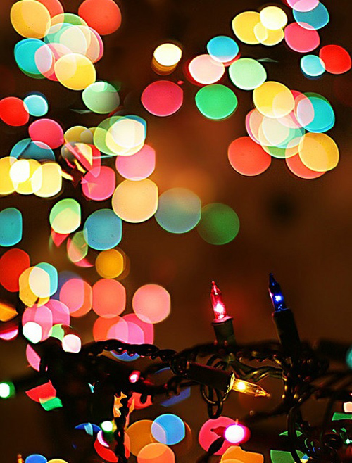 Twinkle Lights Photography-18