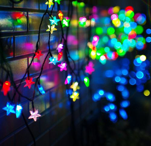 Twinkle Lights Photography-22
