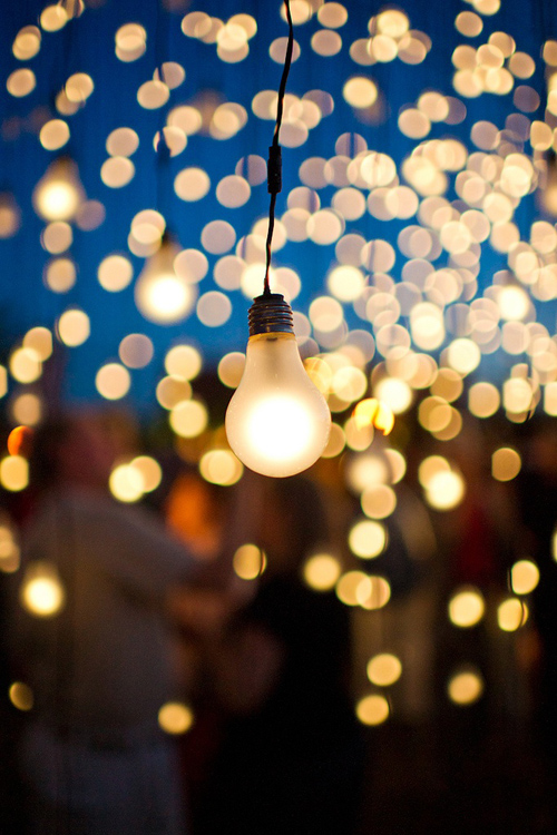 Twinkle Lights Photography-23