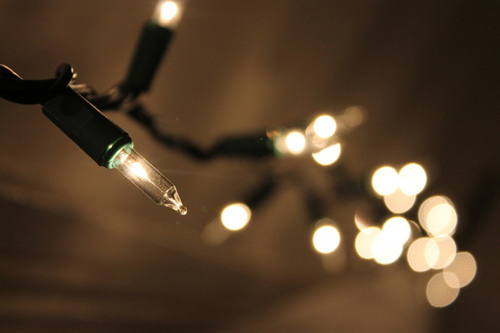 Twinkle Lights Photography-26