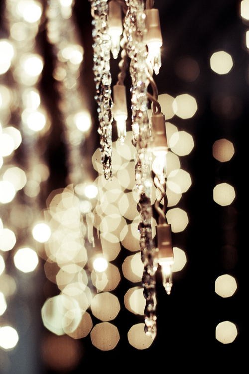 Twinkle Lights Photography-6