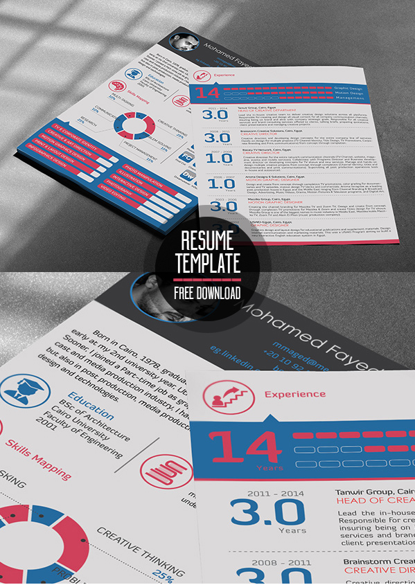 Free Professional Resume Template PSD