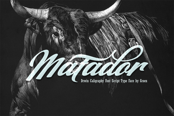 Matador is a hand drawn, stylish copperplate calligraphy font