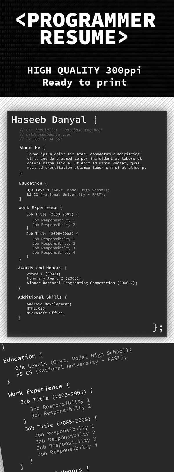 Free Programmer Professional Resume Template