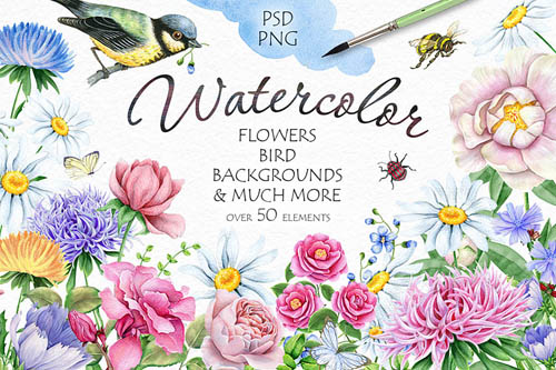 Watercolor Flowers and Bird