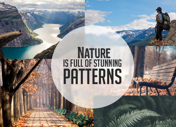 Nature is full of stunning patterns