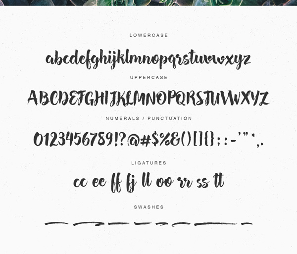 Hensa fonts and letters