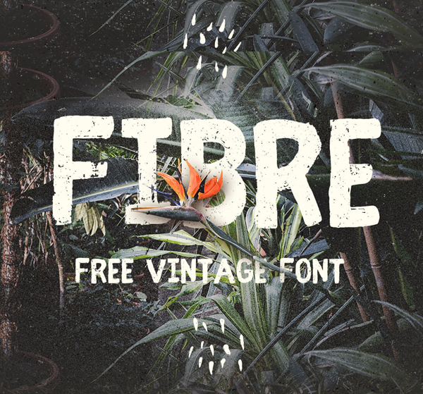 50 Best Free Fonts For 2017 - 7