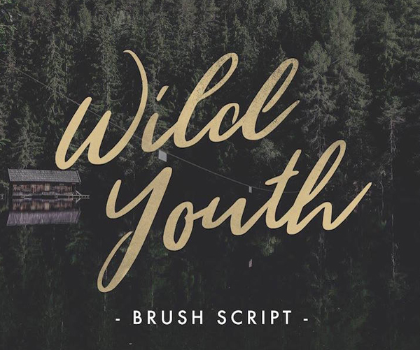 35 Free Hipster Font - 28