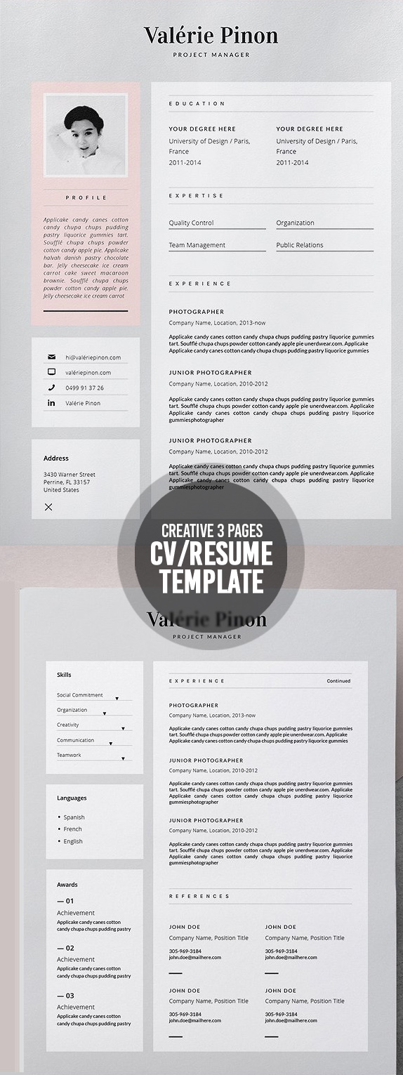 50 Best Resume Templates For 2018 - 36
