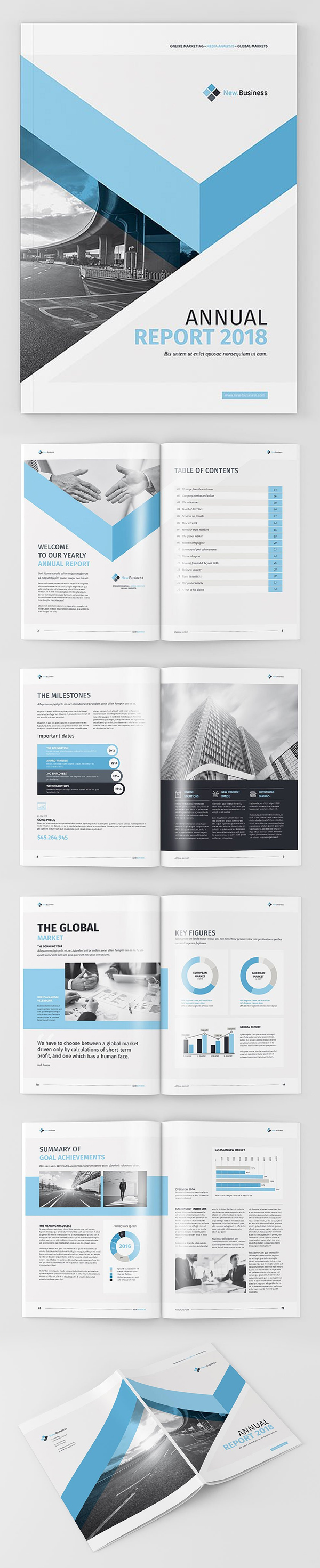 Professional Annual Report 2018 Template