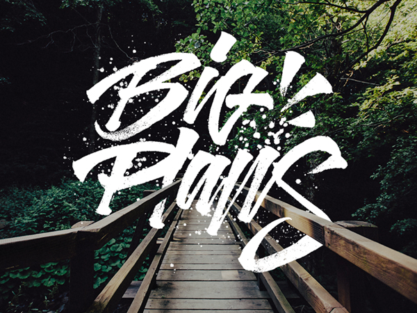 29 Remarkable Lettering and Typography Designs for Inspiration - 11