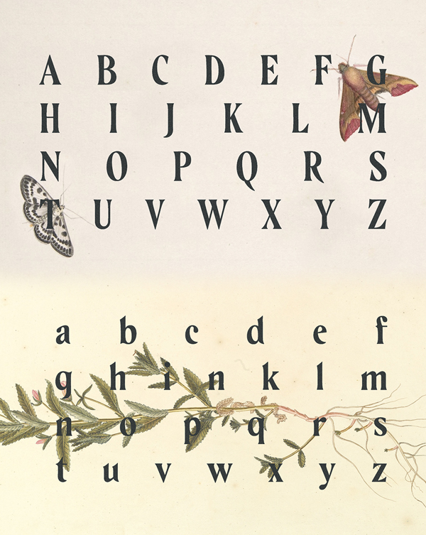 Aventine Font Letters