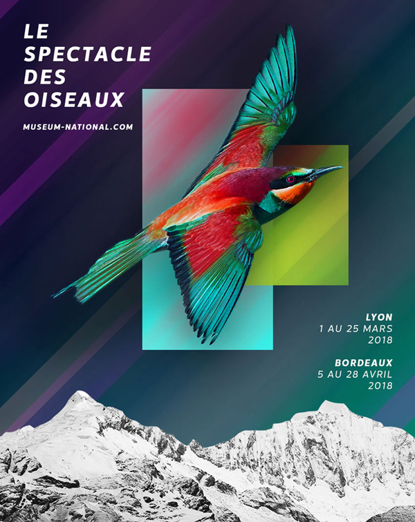 How to Create a Surreal Poster Design in Adobe Photoshop