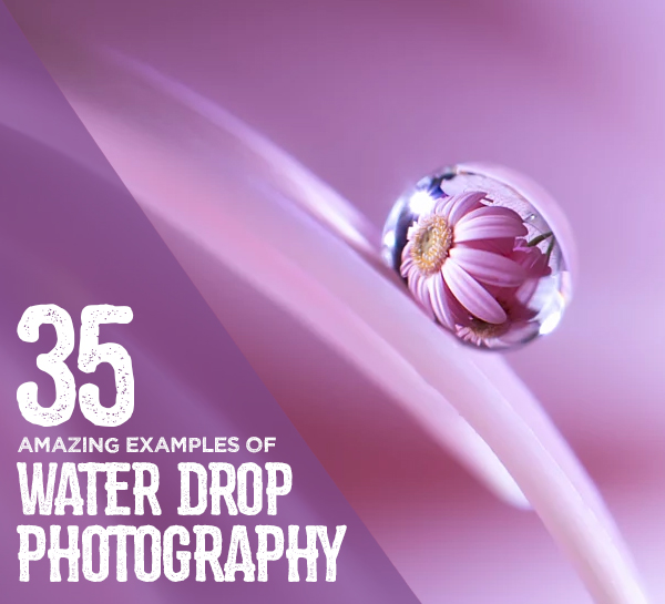 35 Beautiful Examples Of Water Drop Photography
