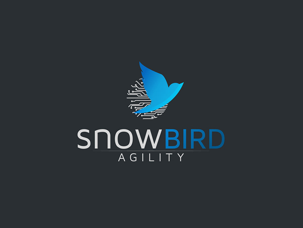 Snow Bird Logo Design