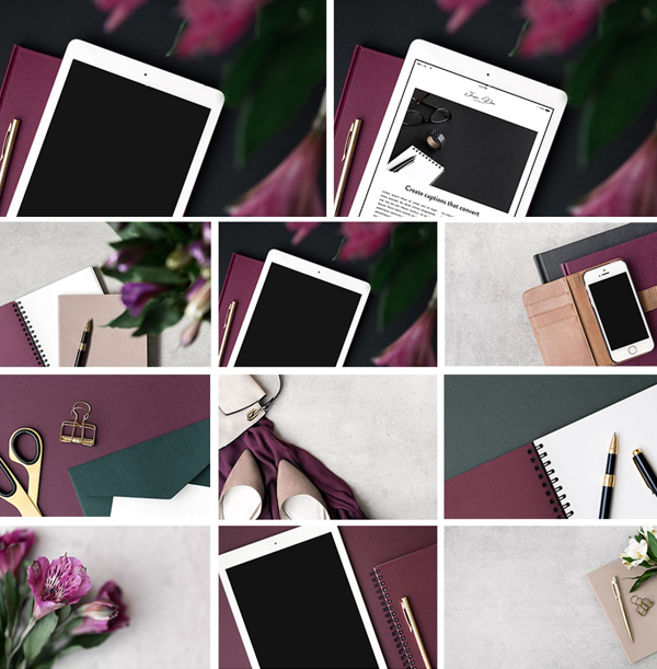 The Mulberry Collection Photo Bundle
