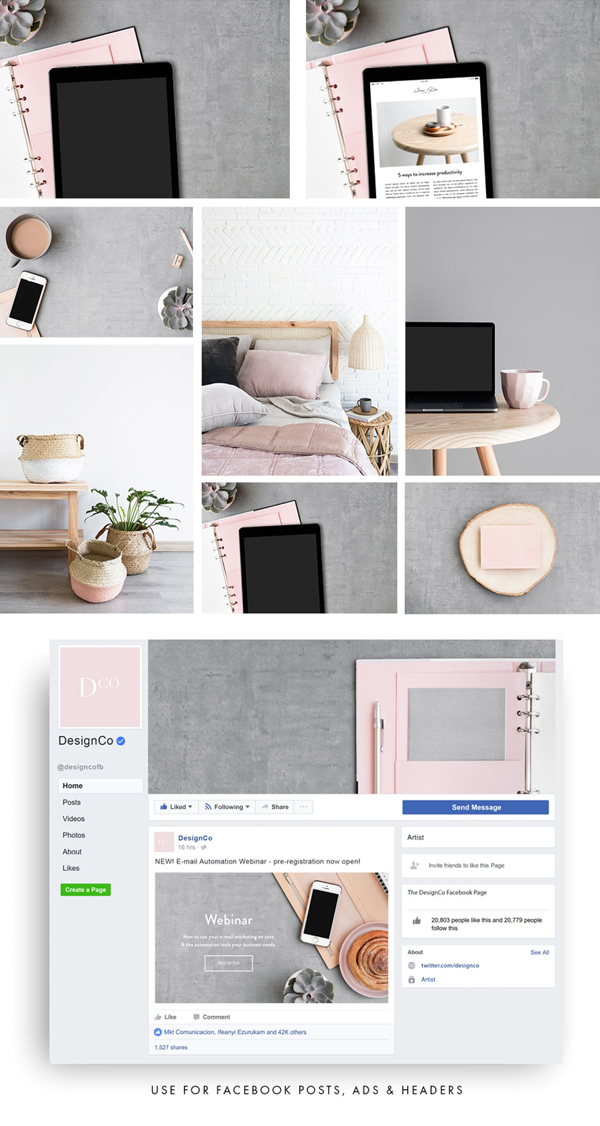 The Pink Collection Photo Bundle