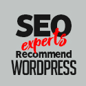 Post Thumbnail of Why Do SEO Experts Recommend WordPress as The Best CMS?