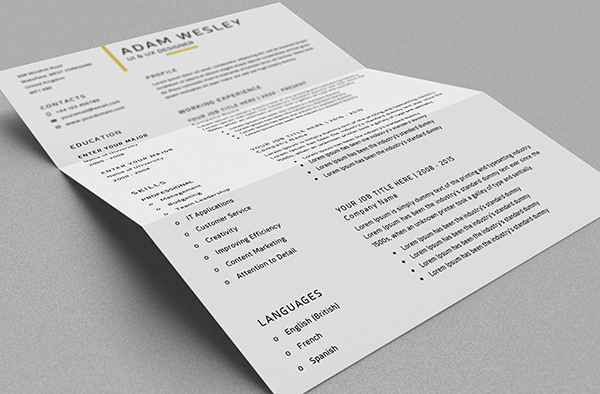 Free Resume Template Mockup View