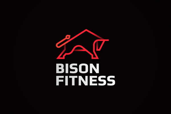 Bison fitness by Ahmed creatives