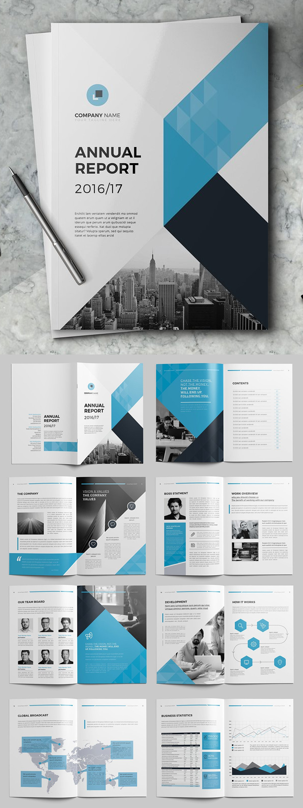 Professional Annual Report