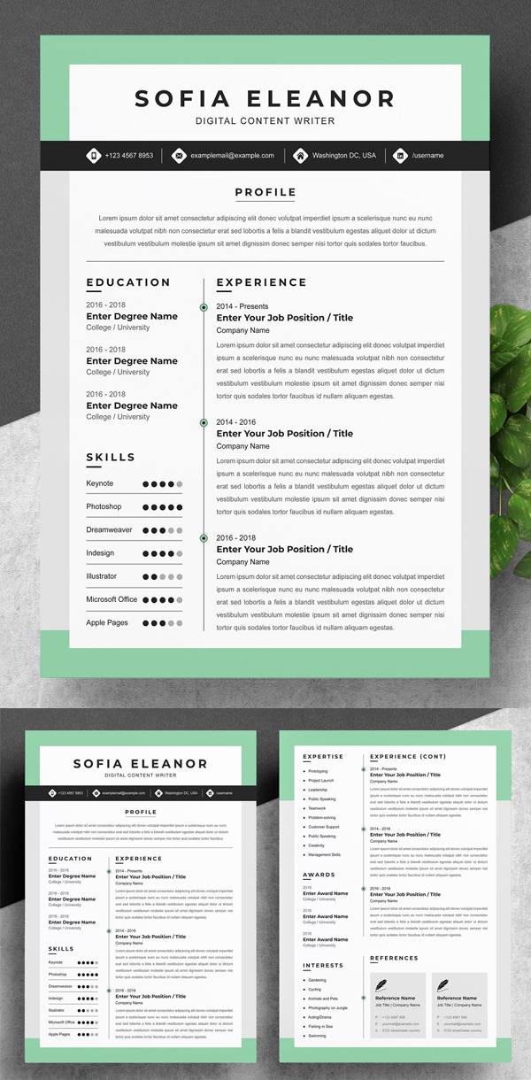 Perfect Creative Resume Template Word