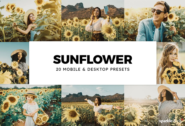 20 Sunflower Lightroom Presets & LUT