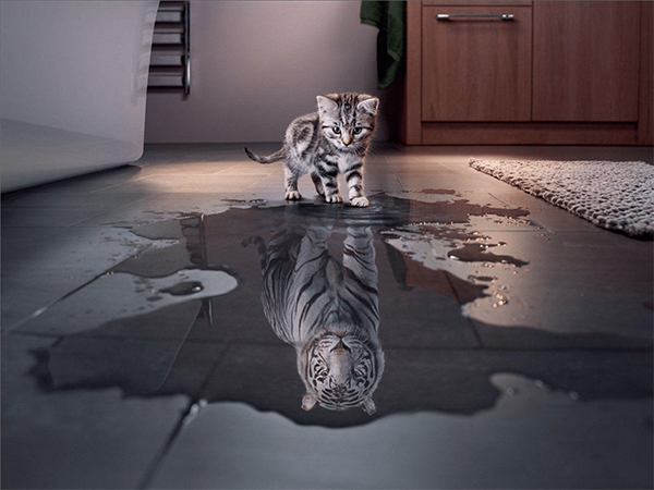 Incredible Photo Manipulations For Inspiration - 6
