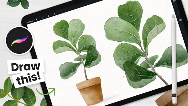 How To Draw Watercolor Cactus in Procreate Tutorial