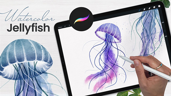 How To Draw Watercolor Jellyfish in Procreate Tutorial