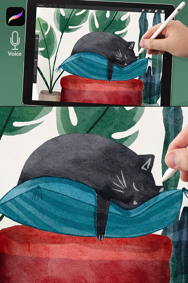 How to Draw Sleeping Cat Watercolor Illustration in Procreate Tutorial