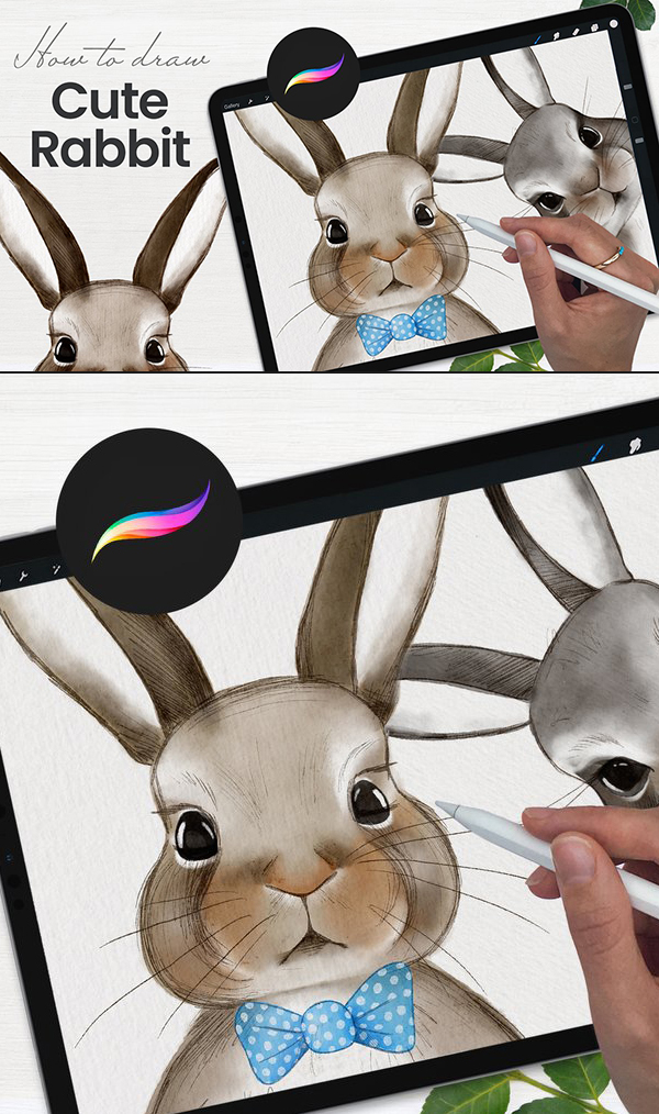How To Draw Cute Rabbit in Procreate Tutorial